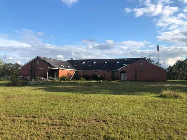 6334 E County Rd 8, Pansey, AL 36370 (MLS #179262) :: Team Linda Simmons Real Estate