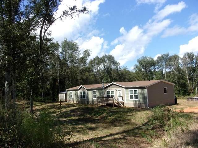 1513 Travis Wise Road, Samson, AL 36477 (MLS #179419) :: Team Linda Simmons Real Estate