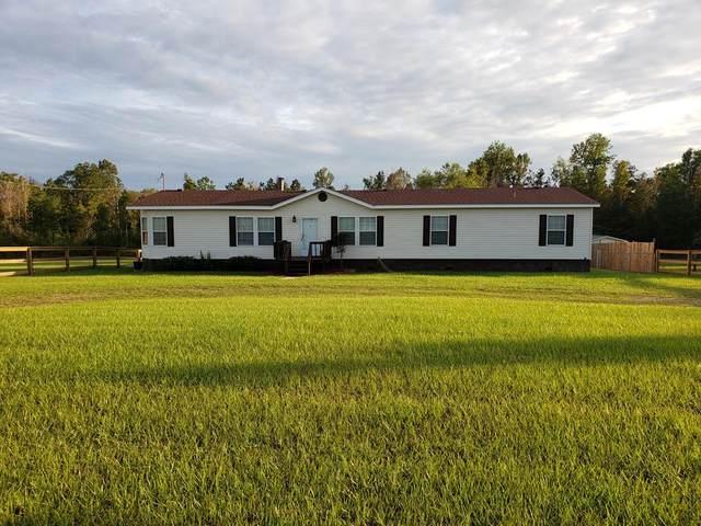 160 Nobles Dr, Cottonwood, AL 36320 (MLS #179431) :: Team Linda Simmons Real Estate