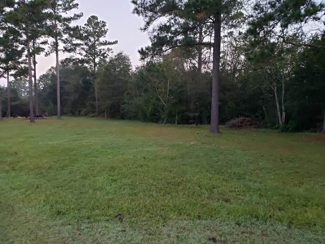 0 Gene Terry Rd, Cottonwood, AL 36320 (MLS #180556) :: Team Linda Simmons Real Estate