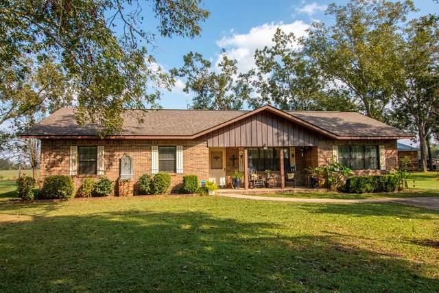 2827 County Rd 91, Slocomb, AL 36375 (MLS #180583) :: Team Linda Simmons Real Estate