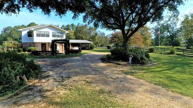 1225 County Road 212, Jack, AL 36346 (MLS #180584) :: Team Linda Simmons Real Estate