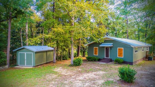 876 Lake Front Dr, Abbeville, AL 36310 (MLS #180587) :: Team Linda Simmons Real Estate