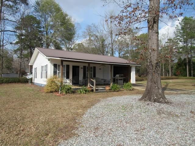 224 Pebble Shores Dr., Georgetown, GA 39854 (MLS #180594) :: Team Linda Simmons Real Estate