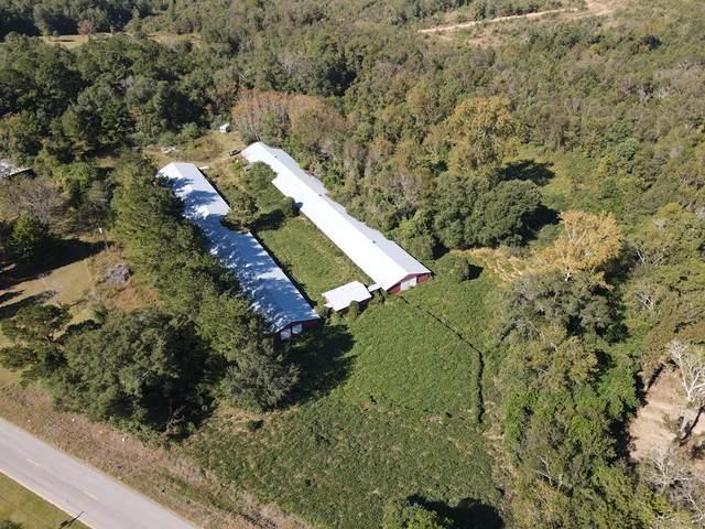 Newton, AL 36352 :: Team Linda Simmons Real Estate