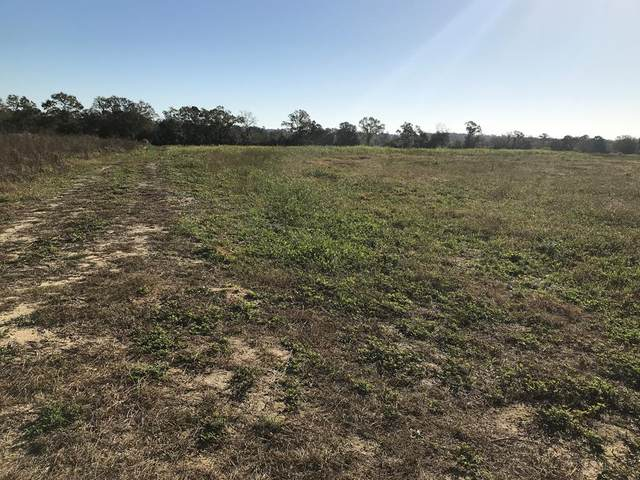 Lot 4A Pea Market Road, Columbia, AL 36319 (MLS #180889) :: Team Linda Simmons Real Estate