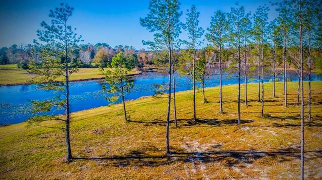 0 Malvern Road, Dothan, AL 36301 (MLS #180932) :: Team Linda Simmons Real Estate