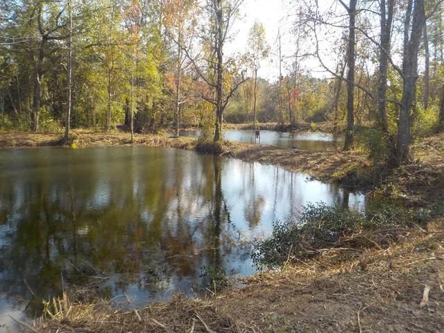 2338 D Hodge Rd, Cottonwood, AL 36320 (MLS #181014) :: Team Linda Simmons Real Estate