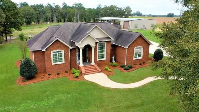 6308 N County Road 65, Coffee Springs, AL 36318 (MLS #181077) :: Team Linda Simmons Real Estate