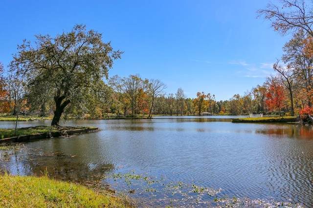 331 Moseley Farm Road, Cowarts, AL 36301 (MLS #181151) :: Team Linda Simmons Real Estate
