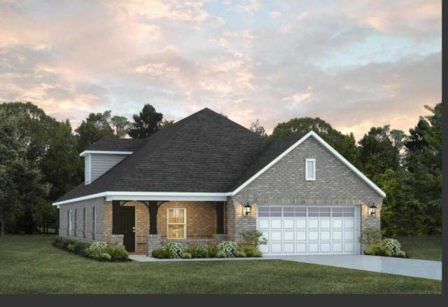 293 Sandbed Road, Newton, AL 36352 (MLS #181218) :: Team Linda Simmons Real Estate