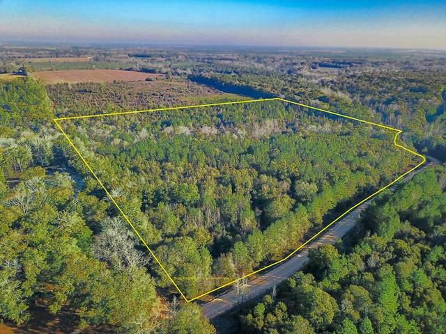 32 acres Campbell Hill Road, Chancellor, AL 36316 (MLS #181284) :: Team Linda Simmons Real Estate