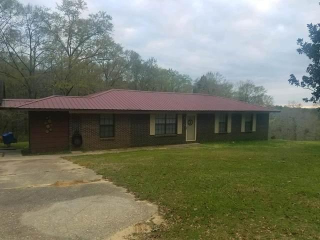 165 County Road 313, Ozark, AL 36303 (MLS #181285) :: Team Linda Simmons Real Estate