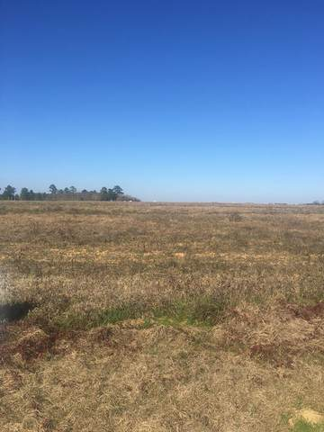 0 Early Walden Road, Headland, AL 36345 (MLS #181322) :: Team Linda Simmons Real Estate