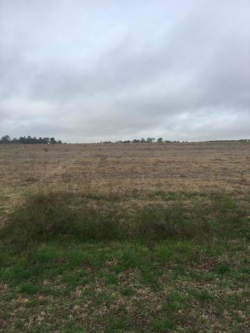 Lot 1 County Road 13, Headland, AL 36345 (MLS #181370) :: Team Linda Simmons Real Estate