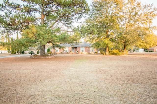 3117 W Holland Road, Newton, AL 36352 (MLS #181403) :: Team Linda Simmons Real Estate