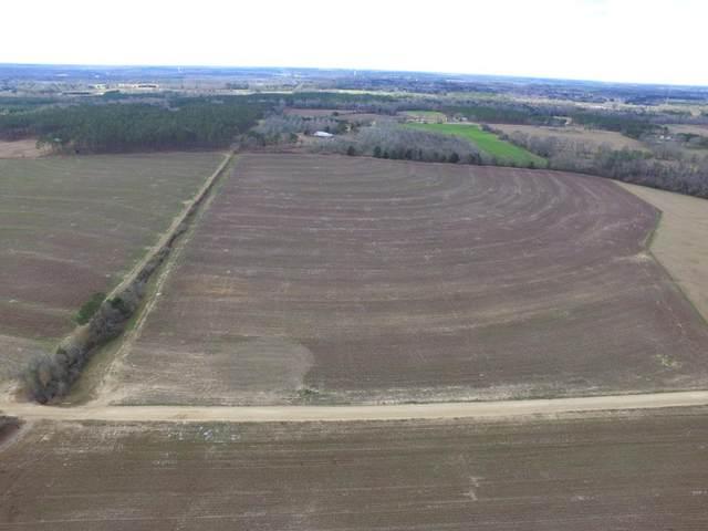 Lot 10A Jb Jackson Rd, Ashford, AL 36312 (MLS #181639) :: Team Linda Simmons Real Estate