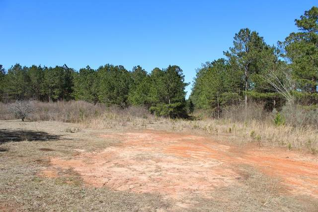 0 County Road 15, Clio, AL 36017 (MLS #181649) :: Team Linda Simmons Real Estate