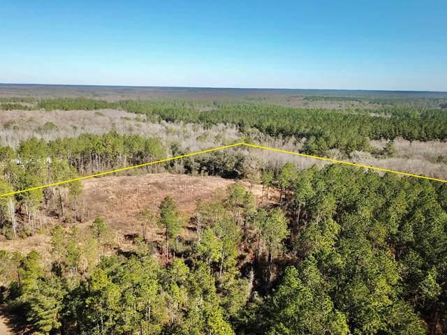 10.27 Acres Reedy Creek Crossing, Westville, FL  (MLS #181658) :: Team Linda Simmons Real Estate