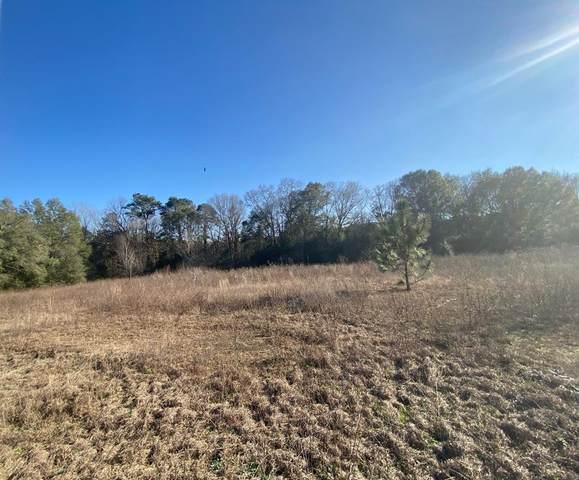 54 Schaffer Road, Newton, AL 36352 (MLS #181703) :: Team Linda Simmons Real Estate
