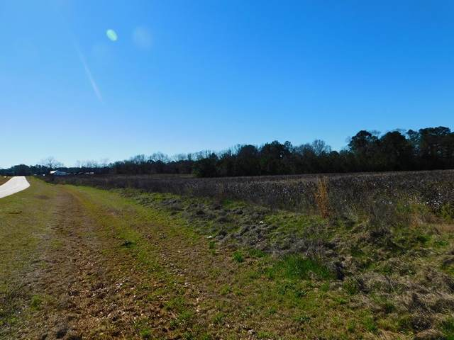 0 Singletary Road, Abbeville, AL 36310 (MLS #181744) :: Team Linda Simmons Real Estate