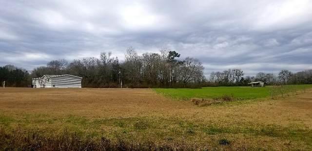 668 S Watford Road, Slocomb, AL 36375 (MLS #181772) :: Team Linda Simmons Real Estate