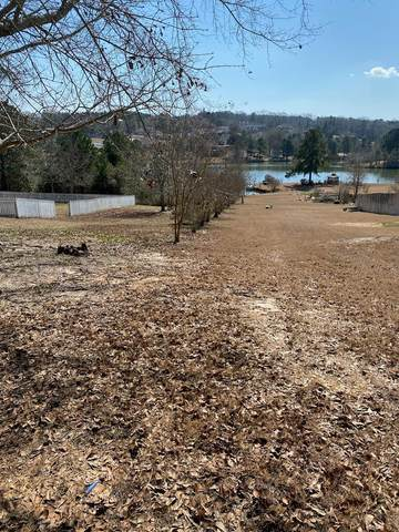 0 County Road 166, New Brockton, AL 36351 (MLS #181791) :: Team Linda Simmons Real Estate