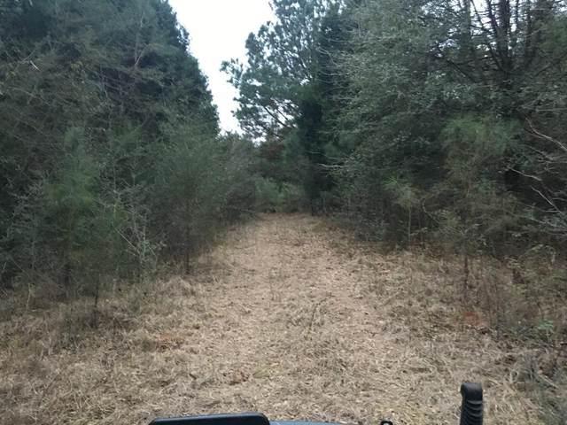 0 County Road 349, Elba, AL 36323 (MLS #181795) :: Team Linda Simmons Real Estate