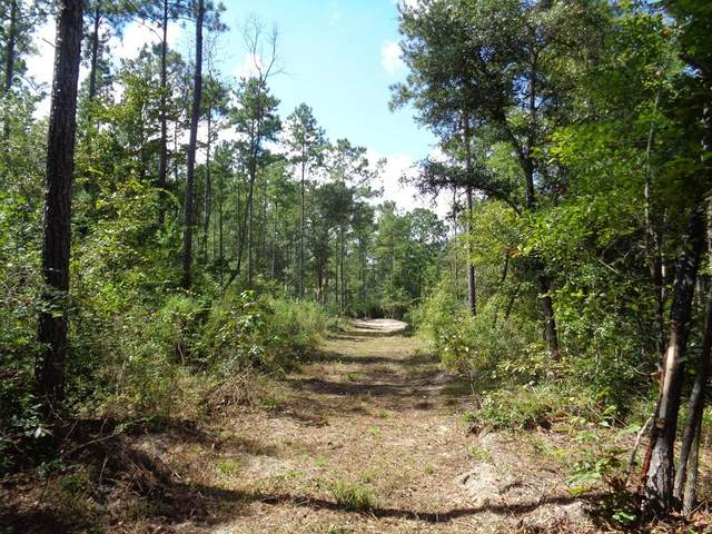 78+-ac Barksdale Rd/Greenhouse Rd, Gordon, AL 36343 (MLS #181902) :: Team Linda Simmons Real Estate