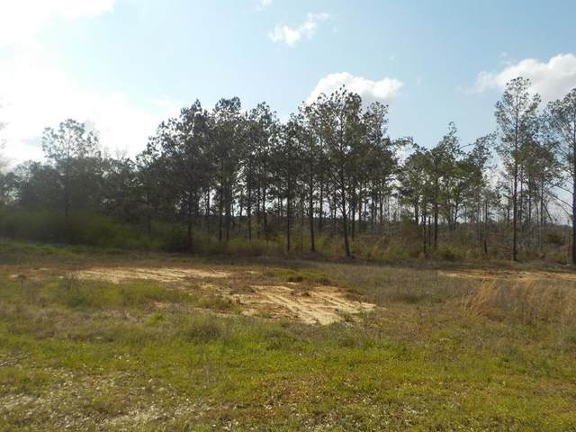 19.48+-ac Cureton Rd, Dothan, AL 36301 (MLS #181944) :: Team Linda Simmons Real Estate