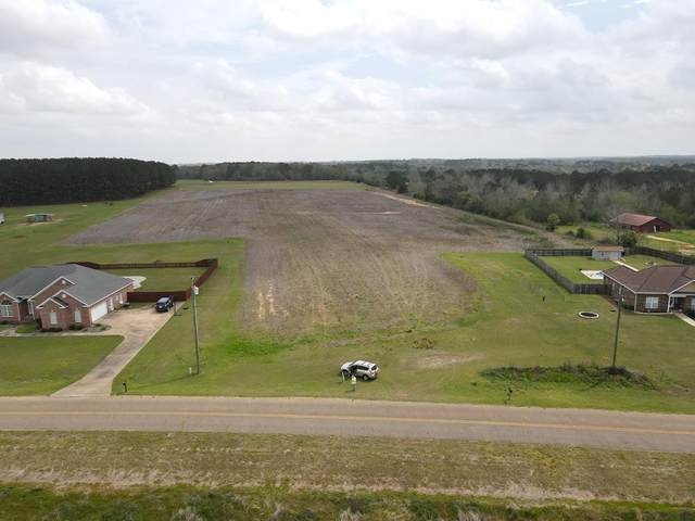 0 Rex Road, Newton, AL 36352 (MLS #181950) :: Team Linda Simmons Real Estate