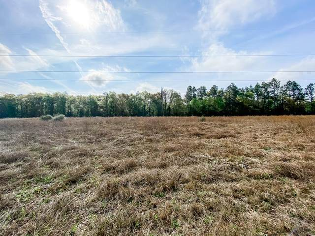 0 Open Pond Rd, Samson, AL 36477 (MLS #182090) :: Team Linda Simmons Real Estate