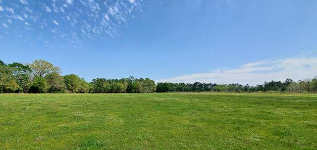 11 Acres E County Rd 4   (11 Acres), Slocomb, AL 36375 (MLS #182098) :: Team Linda Simmons Real Estate