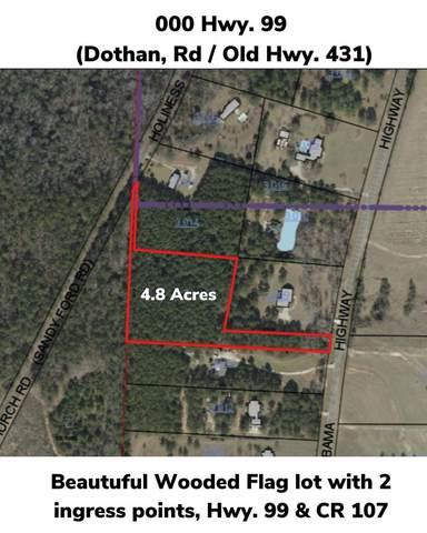 000 Cr 99, Abbeville, AL 36310 (MLS #182103) :: Team Linda Simmons Real Estate