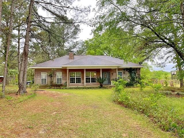 4943 E Highway 134, Midland City, AL 36350 (MLS #182228) :: Team Linda Simmons Real Estate