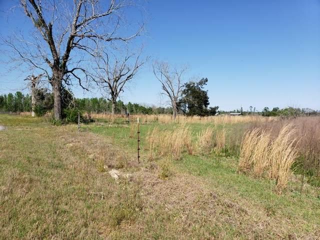 0 S County Road 81, Gordon, AL 36343 (MLS #182425) :: Team Linda Simmons Real Estate