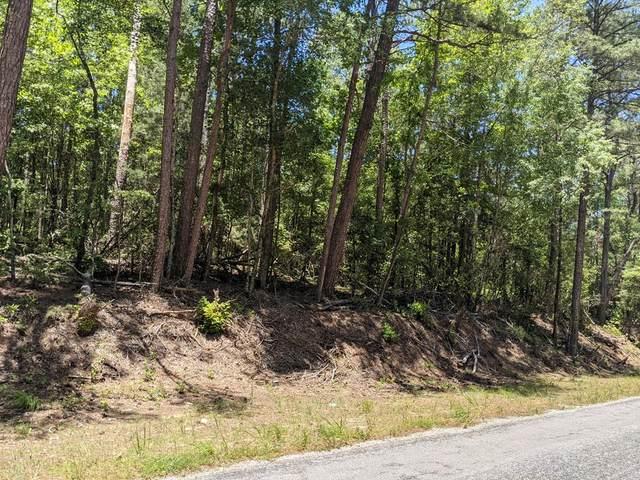 0 County Road 50, Ozark, AL 36360 (MLS #182736) :: Team Linda Simmons Real Estate