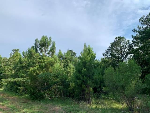 0 Henry County Rd. 97, Abbeville, AL 36310 (MLS #182932) :: Team Linda Simmons Real Estate