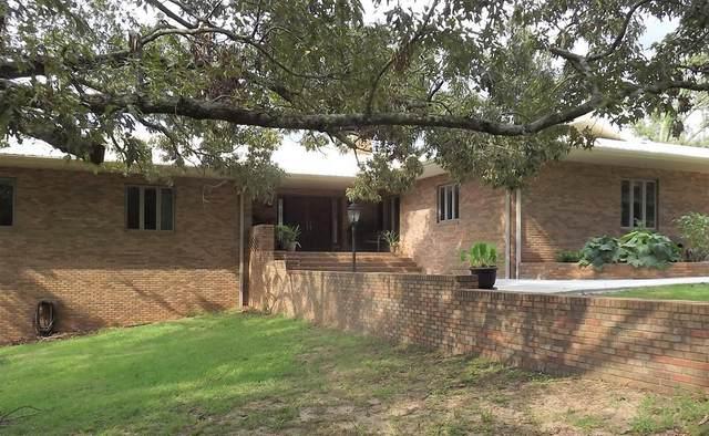 218 Chaney Branch Rd, Clio, AL 36017 (MLS #182961) :: Team Linda Simmons Real Estate