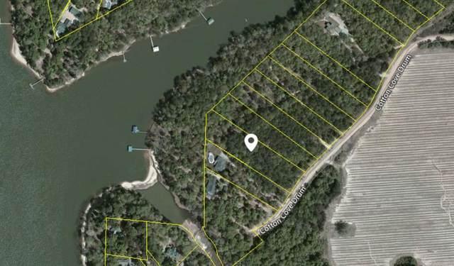92 Cotton Cove Drum, Georgetown, GA 39854 (MLS #183036) :: Team Linda Simmons Real Estate