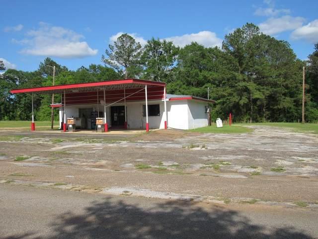 5064 County Road 75, Clopton, AL 36317 (MLS #183062) :: Team Linda Simmons Real Estate