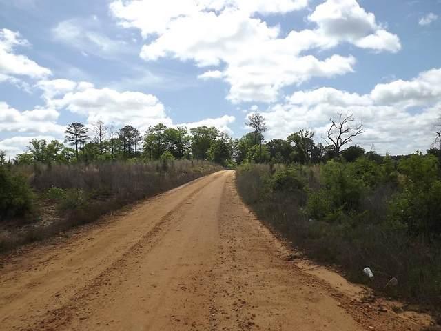 0 Summerhill Road, Eufaula, AL 36027 (MLS #183064) :: Team Linda Simmons Real Estate