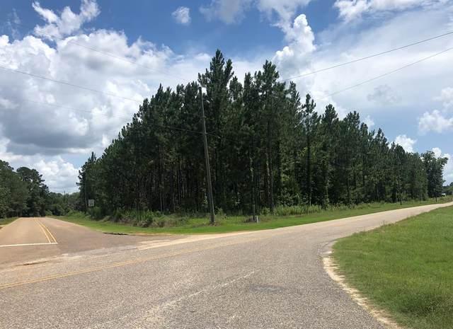0 Mt Zion Rd, Cottonwood, AL 36320 (MLS #183134) :: Team Linda Simmons Real Estate