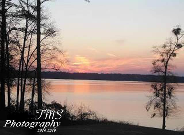 Lot 5 County Line Road, Other, GA 39854 (MLS #183196) :: Team Linda Simmons Real Estate