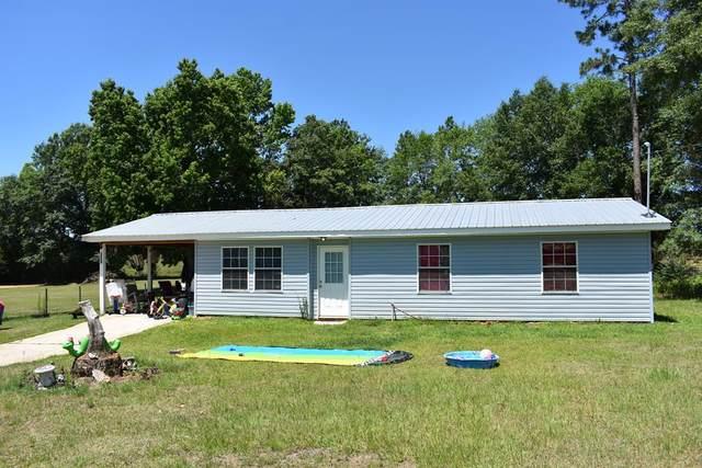 256 County Road 250, Headland, AL 36345 (MLS #183317) :: Team Linda Simmons Real Estate