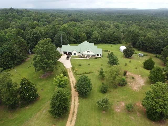 20500 Highway 189, Elba, AL 36323 (MLS #183443) :: Team Linda Simmons Real Estate