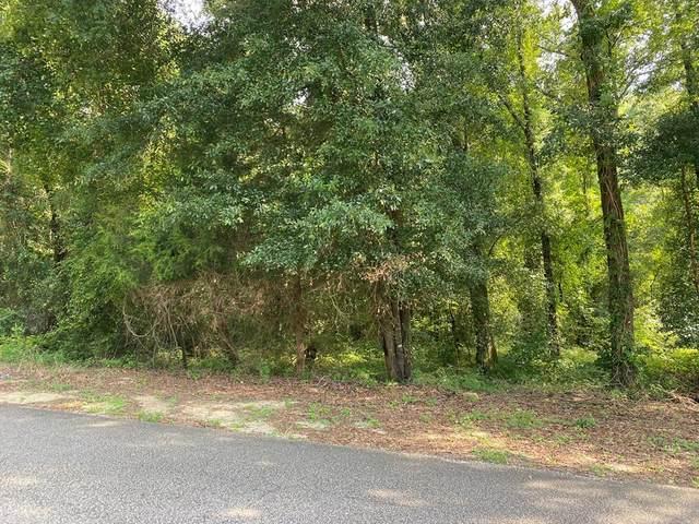 000 Riverside Dr, Dothan, AL 36303 (MLS #183494) :: Team Linda Simmons Real Estate