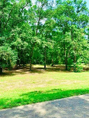 0 County Road 53, Abbeville, AL 36310 (MLS #183539) :: Team Linda Simmons Real Estate