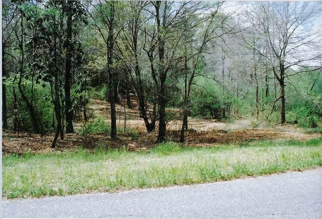 0 County Road 11 Lot 14, Headland, AL 36345 (MLS #183582) :: Team Linda Simmons Real Estate