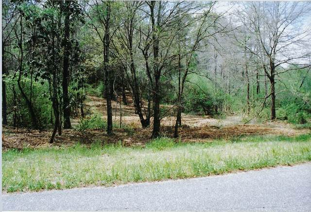 0 County Road 11 Lot 11, Headland, AL 36345 (MLS #183585) :: Team Linda Simmons Real Estate